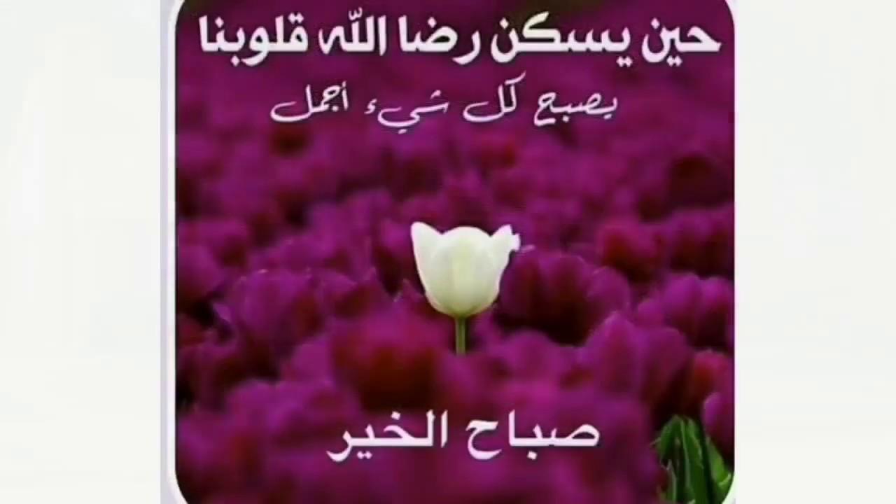 صورة عبارات صباح الخير , صباح مشرق مع كلمة صباح الخير 5387 1