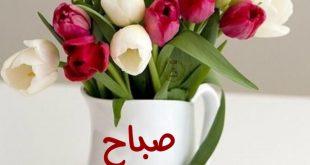 عبارات صباح الخير , صباح مشرق مع كلمة صباح الخير
