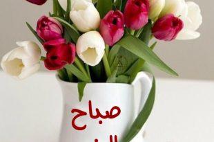 صورة عبارات صباح الخير , صباح مشرق مع كلمة صباح الخير