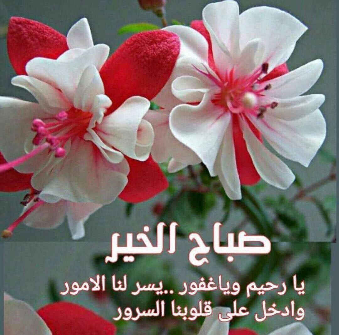 صورة عبارات صباح الخير , صباح مشرق مع كلمة صباح الخير 5387 3