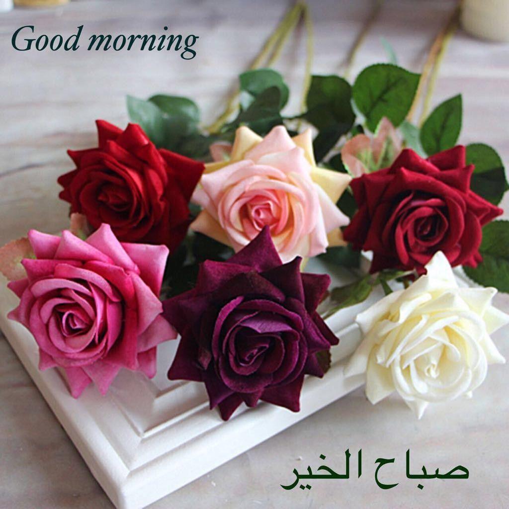 صورة عبارات صباح الخير , صباح مشرق مع كلمة صباح الخير 5387 5