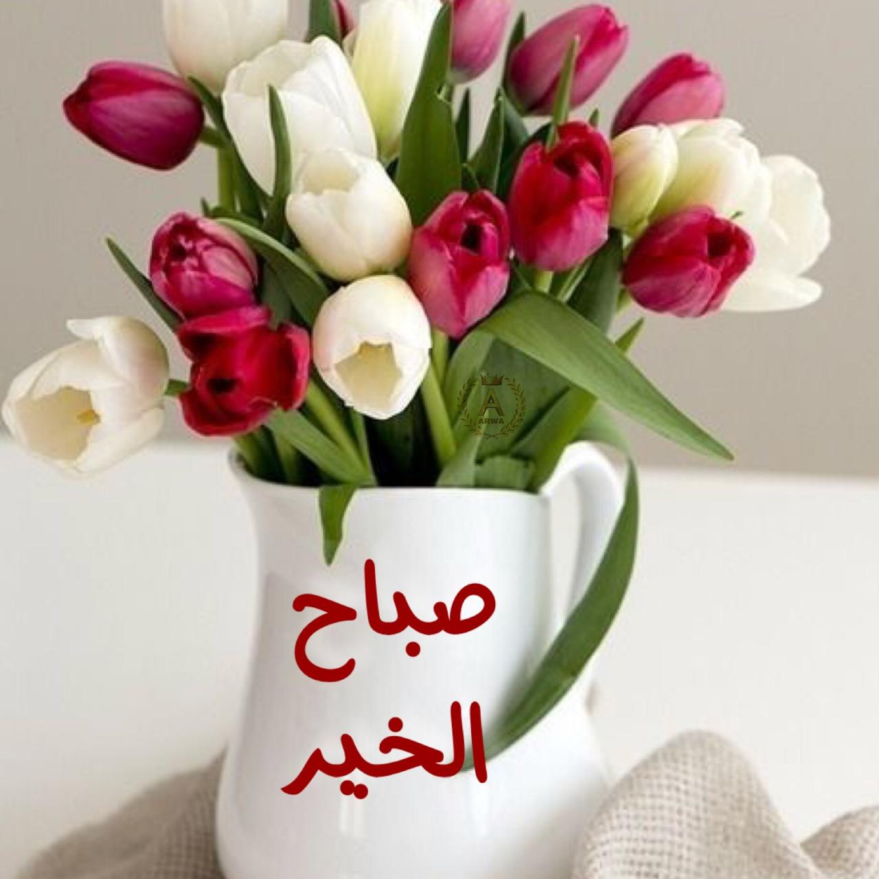 صورة عبارات صباح الخير , صباح مشرق مع كلمة صباح الخير 5387