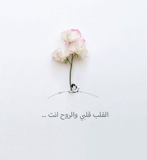 صورة ماذا يقال بين الأحبة , كلام حب جميل للحبيب 11097 8