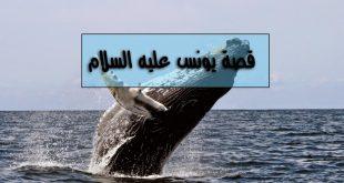 قصة صاحب الحوت