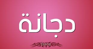 معنى اسم دجانة