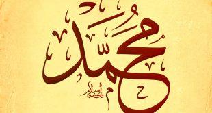 ما معنى اسم محمد