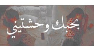 بحبك وحشتيني , من اجمل الاغانى المصرية